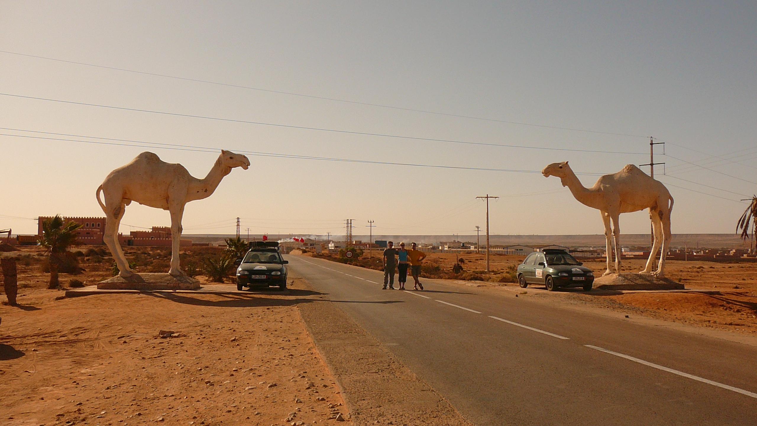 Tag 9 : Plage Aglou - El Aaiún - Das Tor zur Sahara