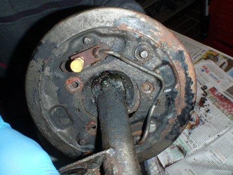 Bremsplatte Rückseite