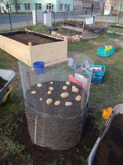 Kartoffelturm vorletzte Lage