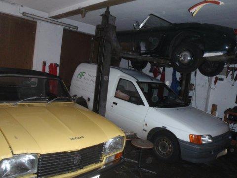 Frosch und Peugeot