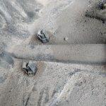 Rüsselsheimer Rohrbombe V