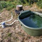 No Pool? No Problem! II