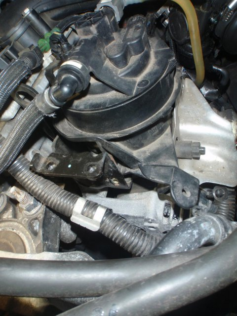 Dieselfilter freigelegt